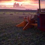 Organic Hay & Soy